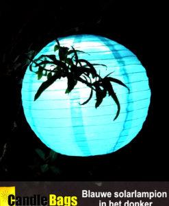 Onze blauwe solarlampion op zonne energie