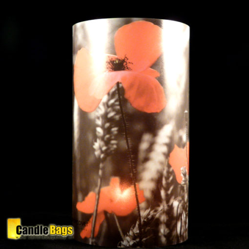 candlecover klaproos