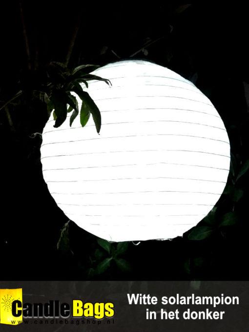 Onze witte solarlampion op zonne energie