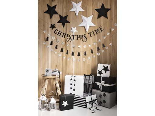 kerst sterren verkrijgbaar in zwart en wit