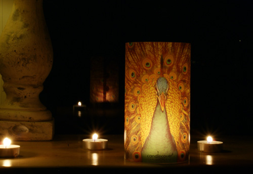 Candlecover met pauw