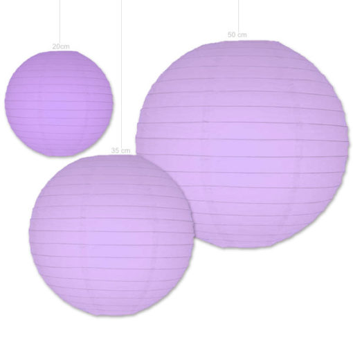 lila lampionnen verkrijgbaar in 3 formaten