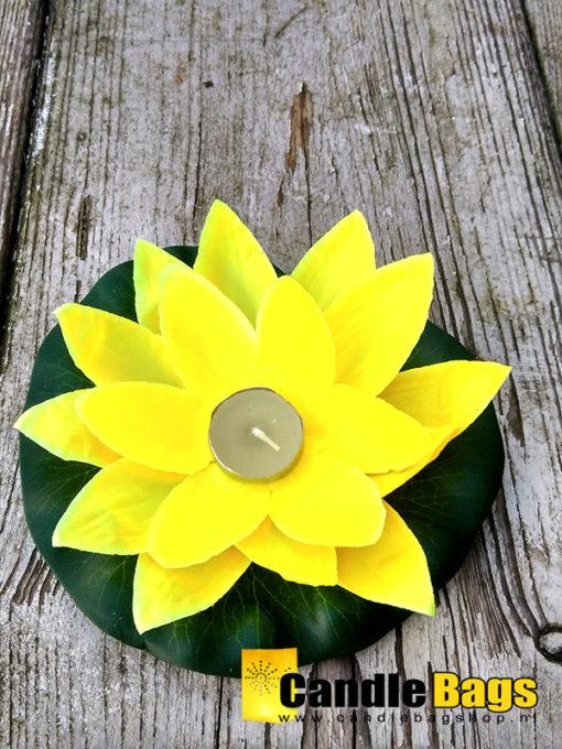gele lotusbloem