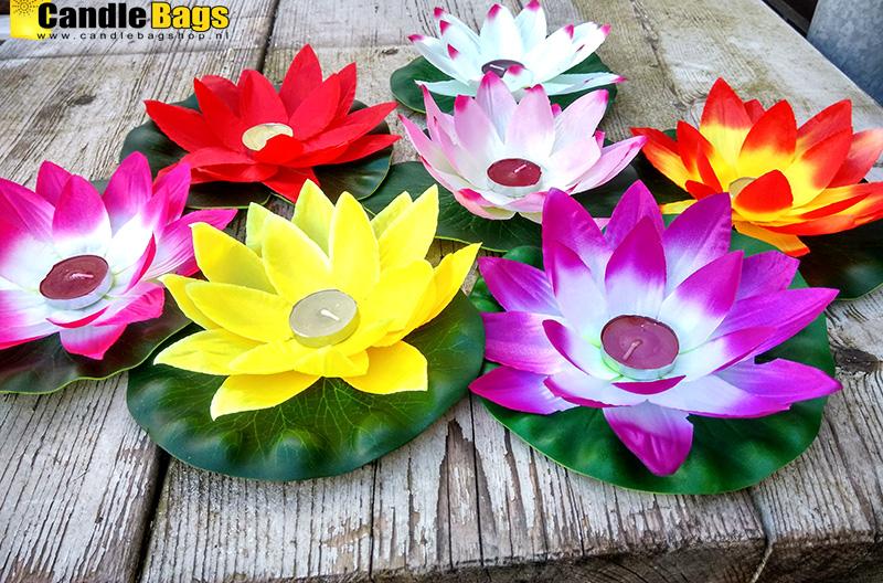 lotusbloemen waterlelie