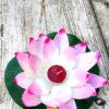 lotusbloem-zacht-roze-wit-polyester