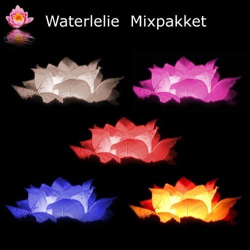 mixpakket van 5 waterlelie waterlantaarns
