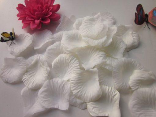 witte rozenblaadjes
